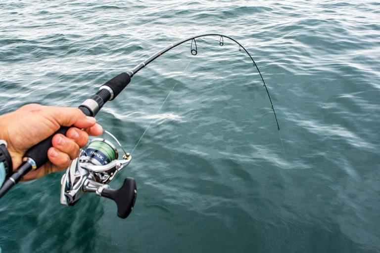 Cần câu cá món quà thiết thực tặng bố
