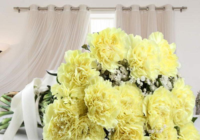 Hoa cẩm chướng vàng thể hiện sự từ chối
