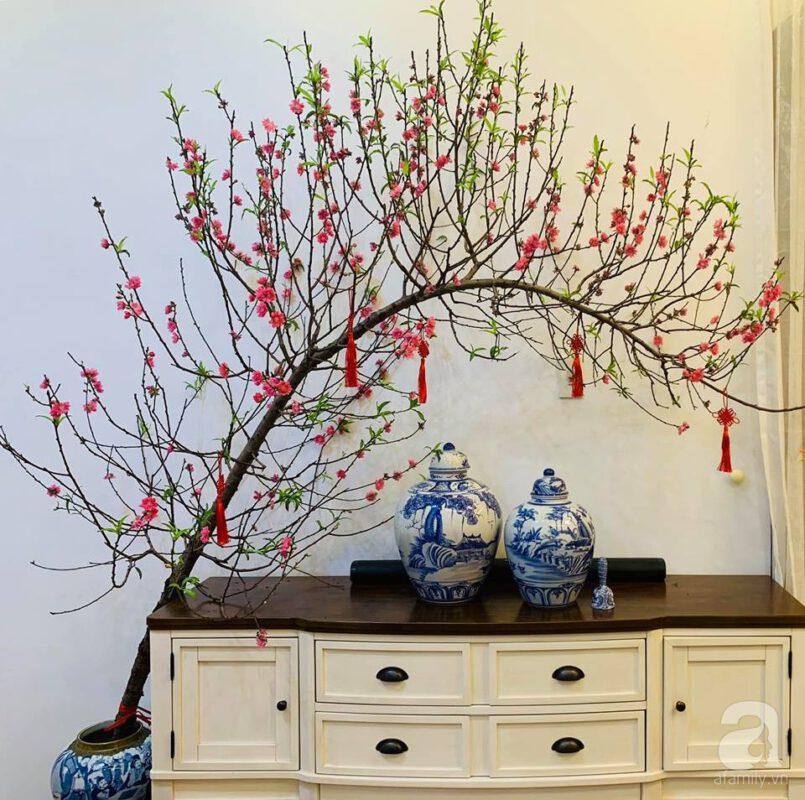 Điều chỉnh độ sáng - Cách làm cho cành đào nở hoa nhanh