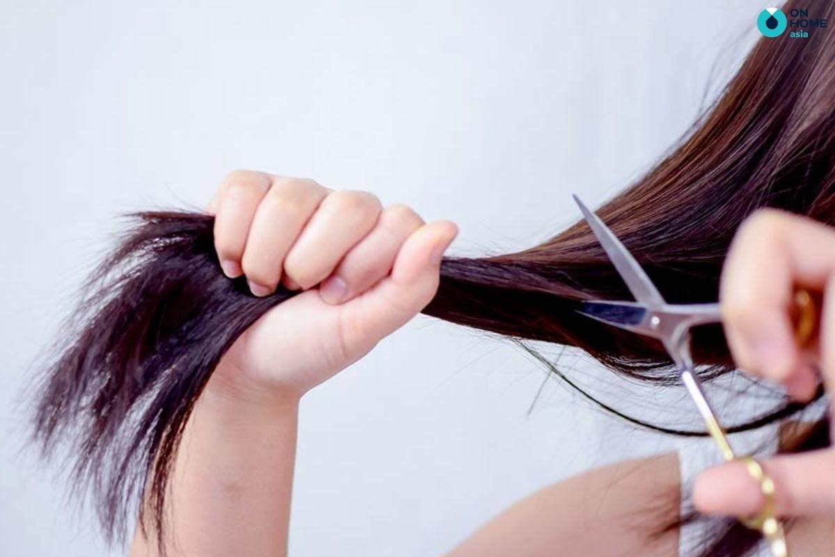 Không nên cắt tóc